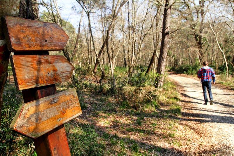 由路旁竖立路标在森林和人走的森林 免版税图库摄影