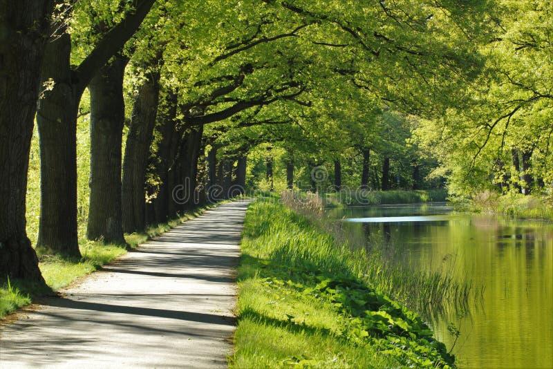 由运河的周期道路 免版税库存图片