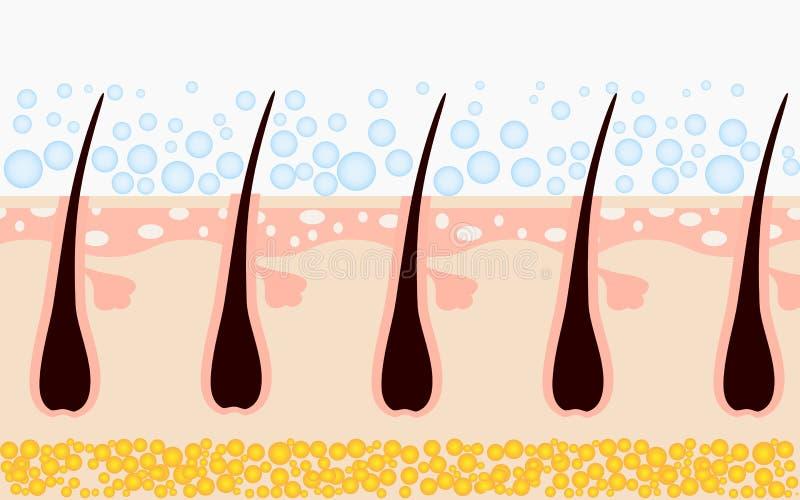 由香波清洗头发和皮肤 背景弄脏了关心概念表面健康防护屏蔽的药片 向量 向量例证