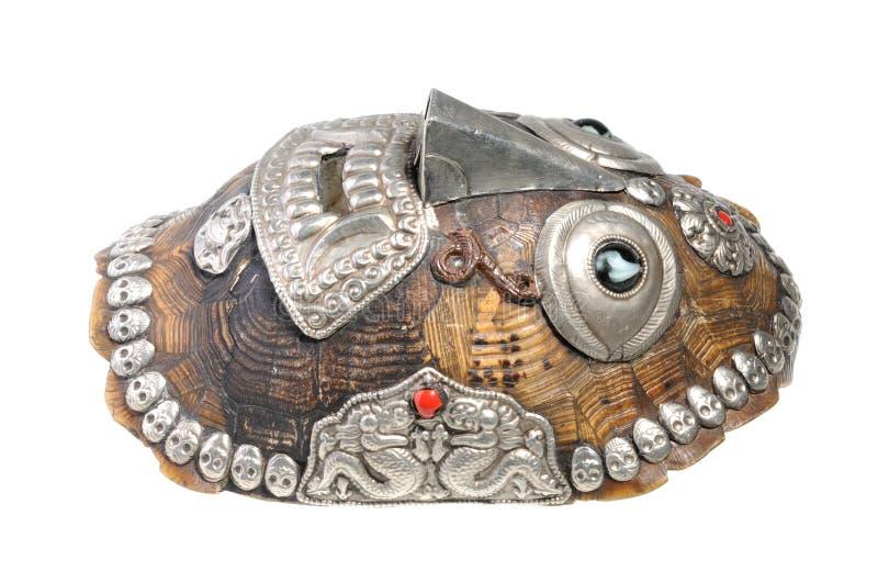 甲壳做屏蔽草龟乌龟 免版税库存照片