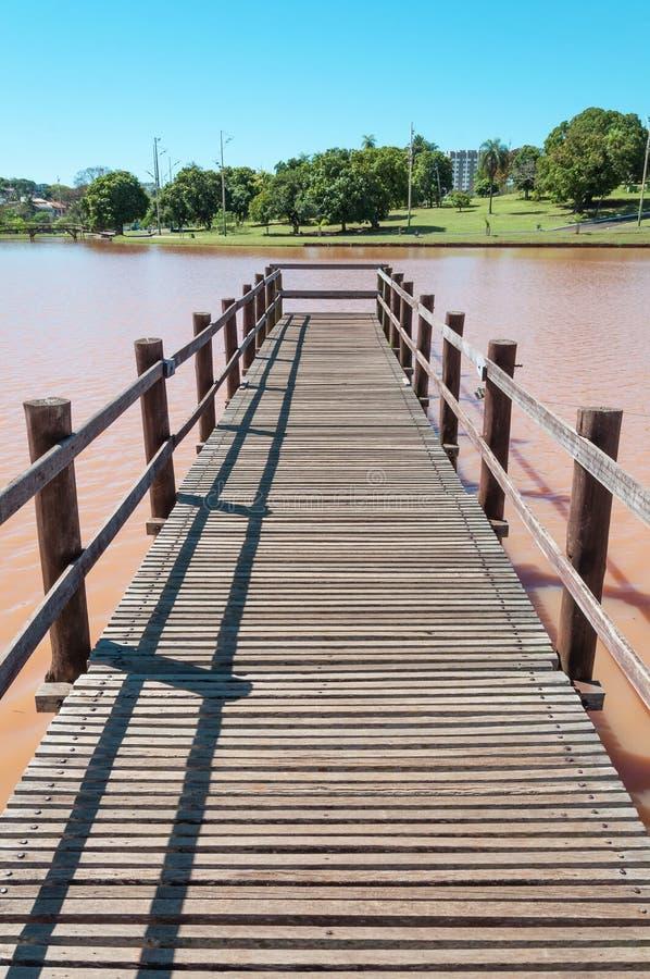 甲板由木板制成在湖水在有树和绿色植被背景的一个公园 免版税库存图片