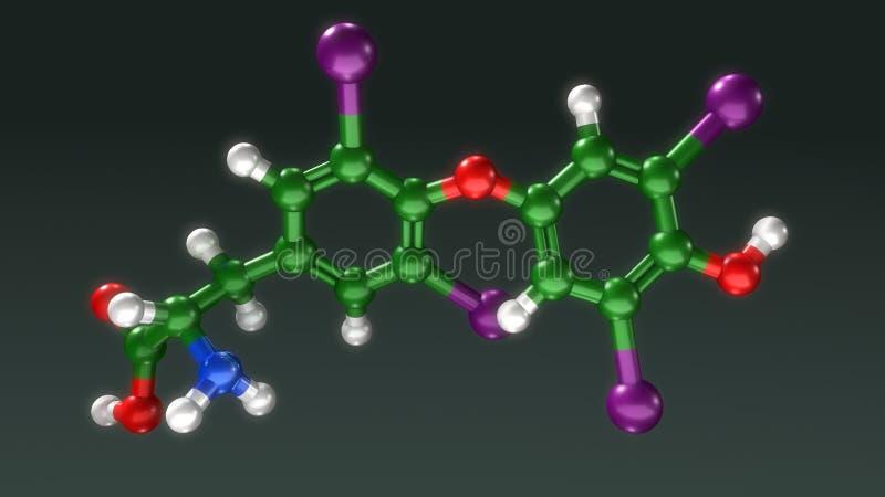甲状腺素结构 向量例证
