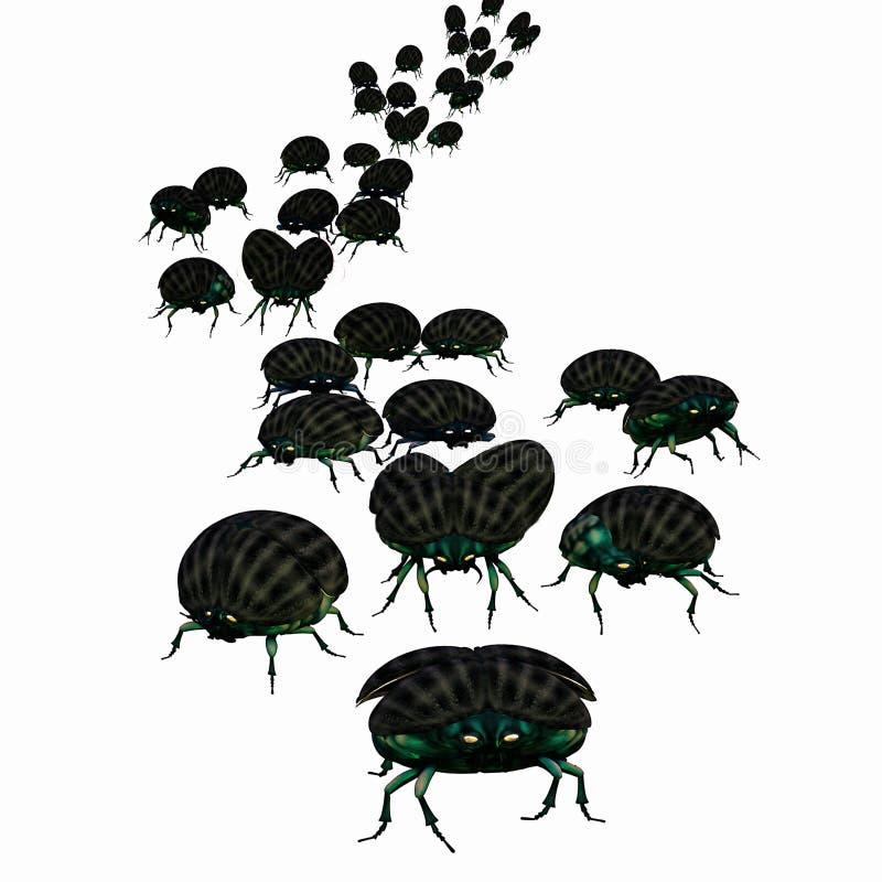 甲虫大批出没 库存例证