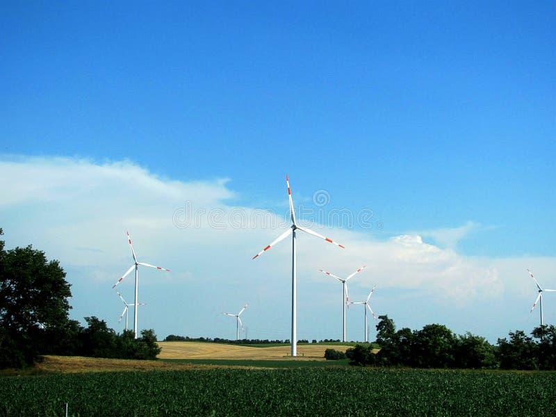 电力生产的风车 图库摄影