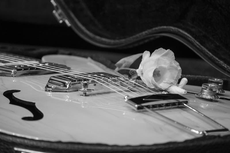 电吉他特写镜头有容量的和音调控制瘤和花 免版税库存图片