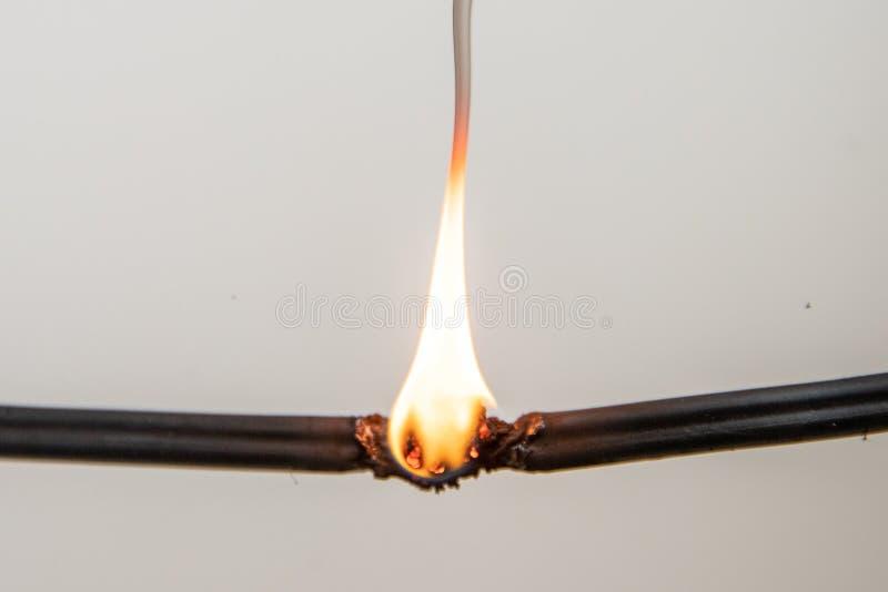 电子短路,被烧的缆绳,在白色背景 免版税库存图片