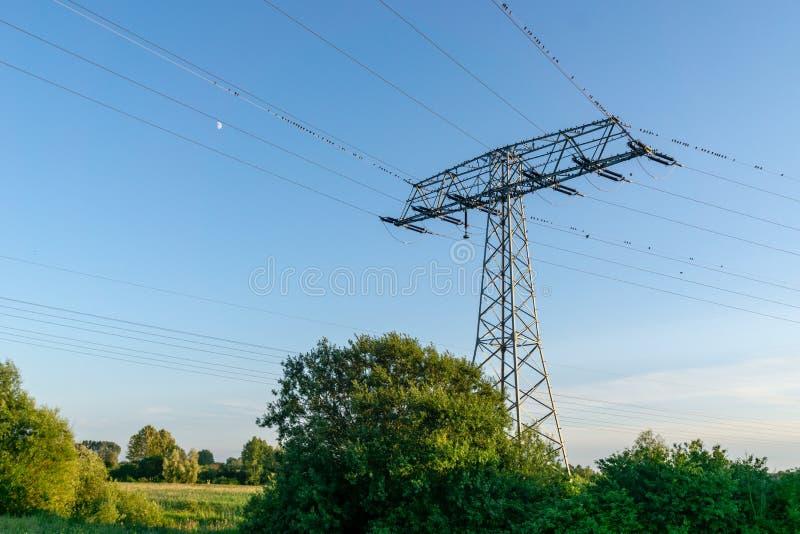 电定向塔和高压输电线在领域 免版税库存照片
