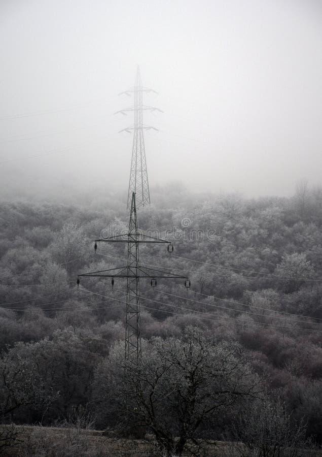 电杆在冬天 库存图片