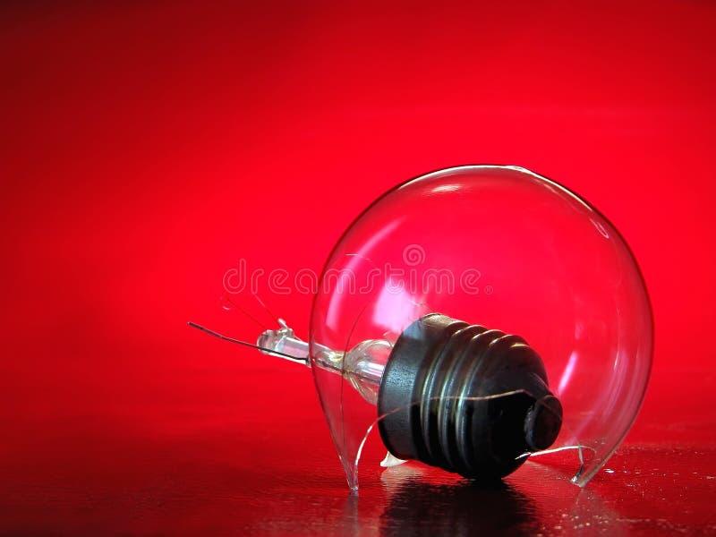 电灯泡光蜗牛 库存图片