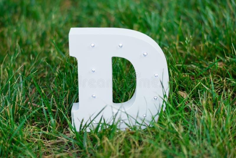电灯泡发光的信件字母表字符D字体 在绿草背景的正面图标志 免版税库存照片