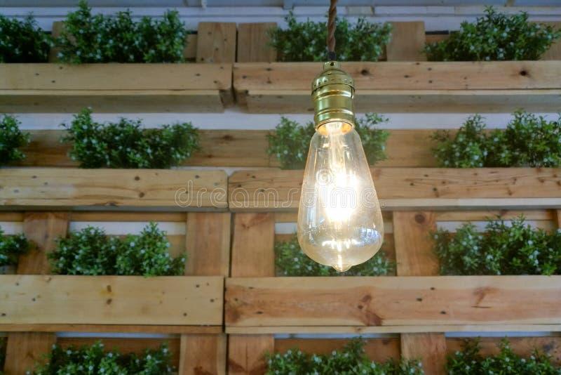 电灯泡和绿色植物内部 免版税图库摄影