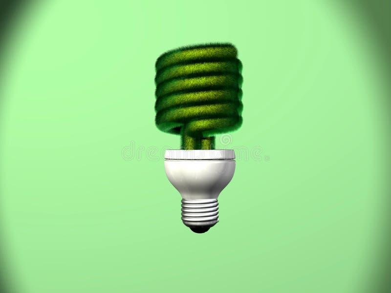 电灯泡紧凑萤光草 库存图片