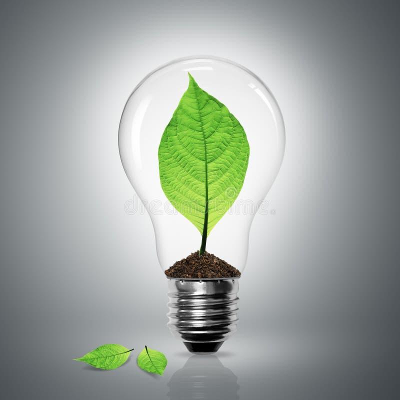电灯泡绿色留下轻的次幂 向量例证