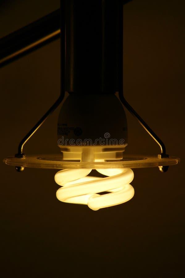 电灯泡cfl 库存图片