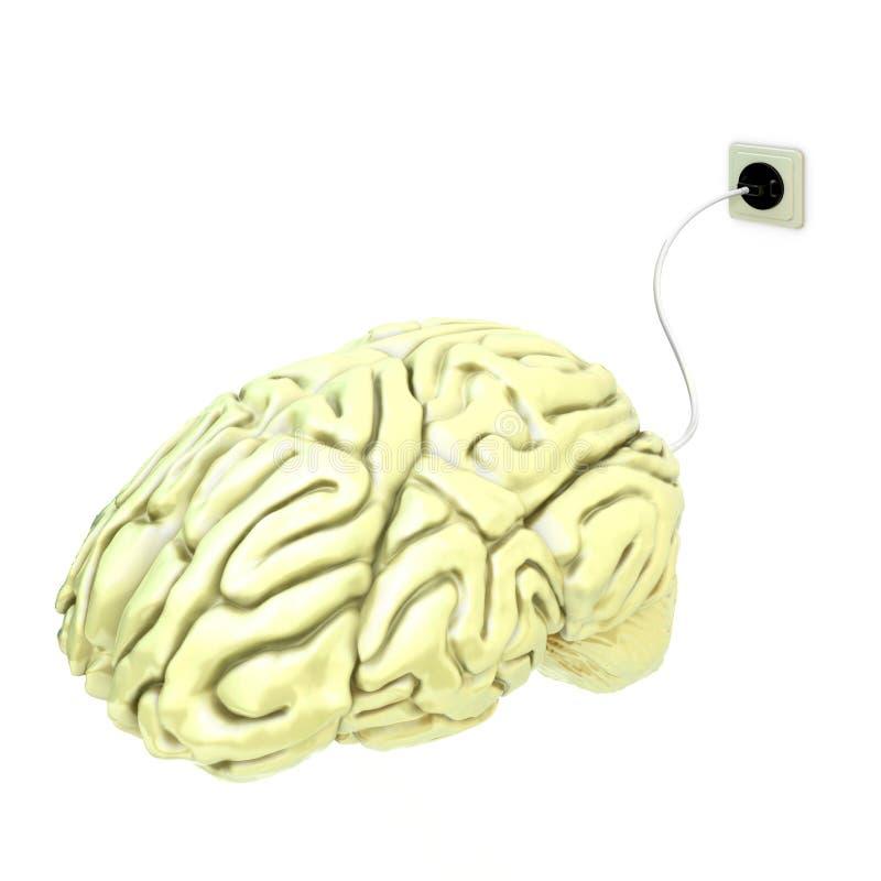 电的脑子 库存例证