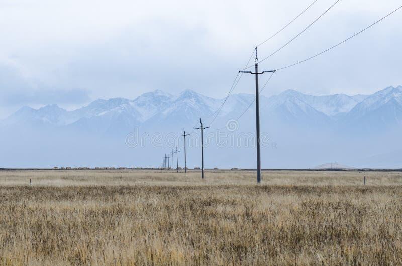 电线和柱子横跨上部西藏的平原 免版税库存图片
