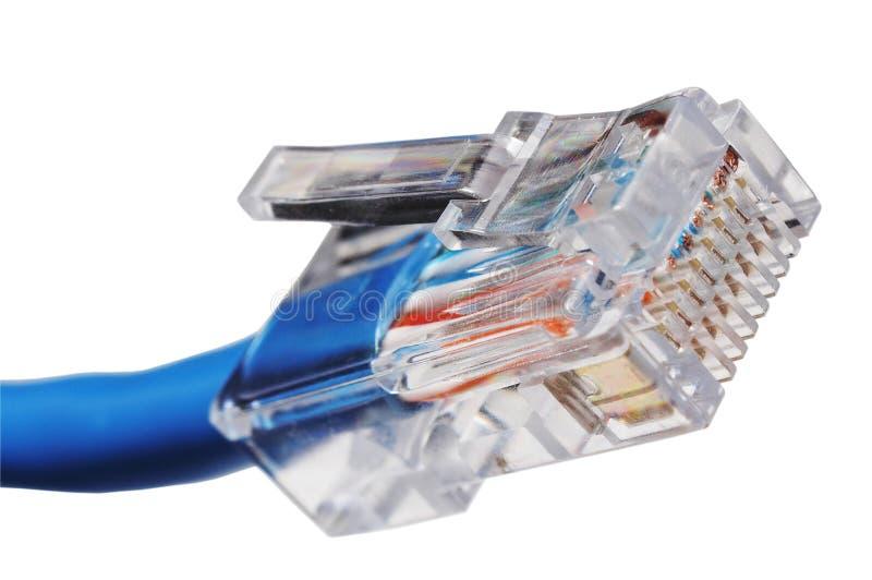 电缆插件rj45 库存图片