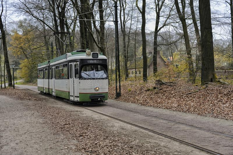电车乘驾通过公园 库存照片
