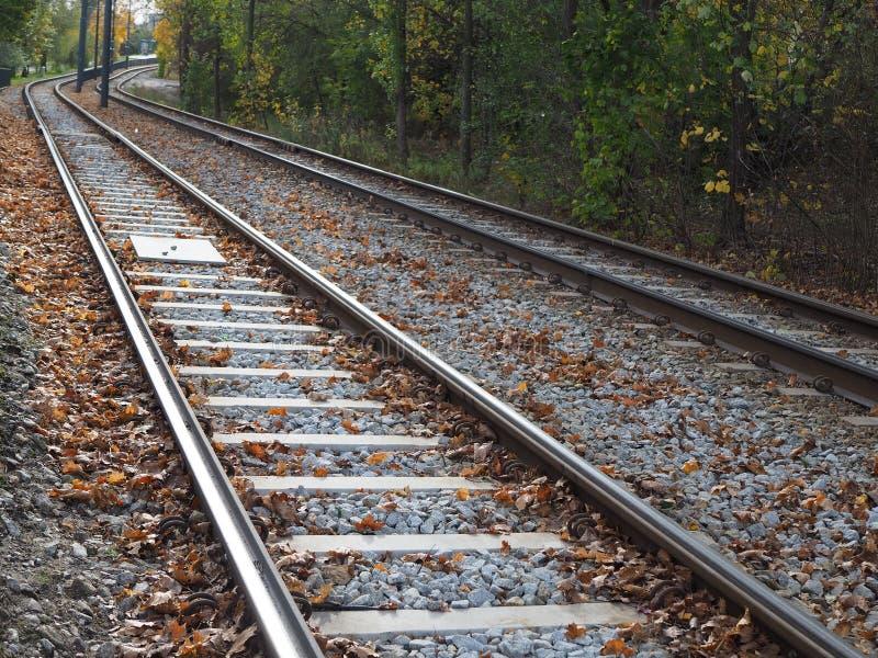 电车轨道在树,秋叶中的城市 库存照片