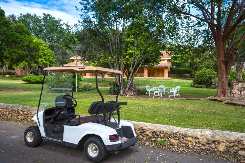 电高尔夫车在公园 库存图片