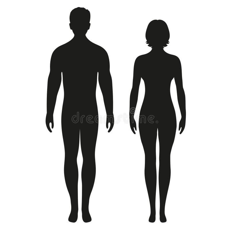 男人、妇女、男性、女性人体平的象app的和网站 向量例证
