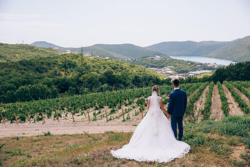 男人和妇女敬佩自然秀丽,紧紧握手并且做计划为将来 婚姻的步行本质上 免版税图库摄影
