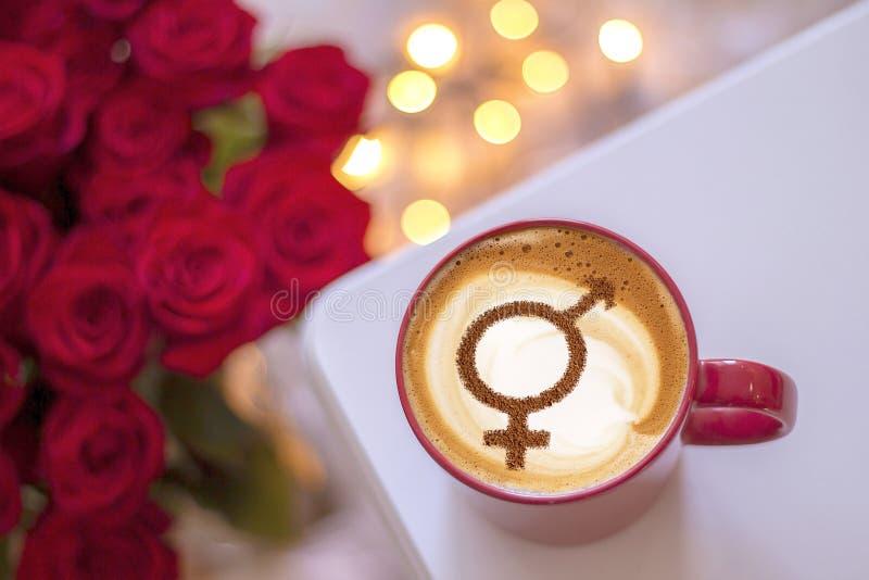 男女平等的标志 免版税库存图片