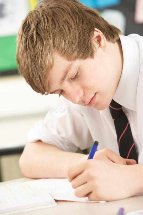 男学生学习少年 免版税库存照片
