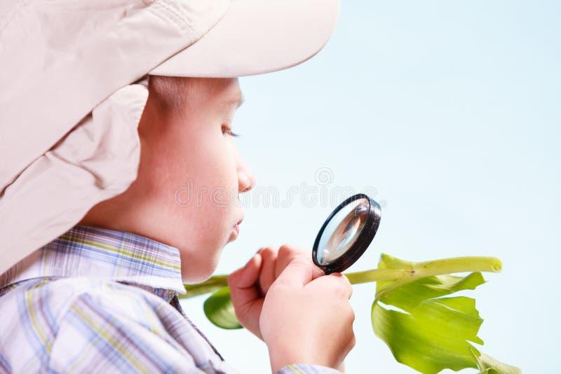 年轻男孩举行花和放大镜 免版税库存图片