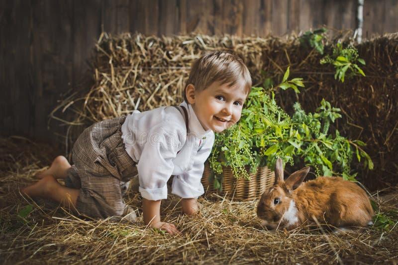 男孩使用与动物在饲槽6054 免版税库存图片