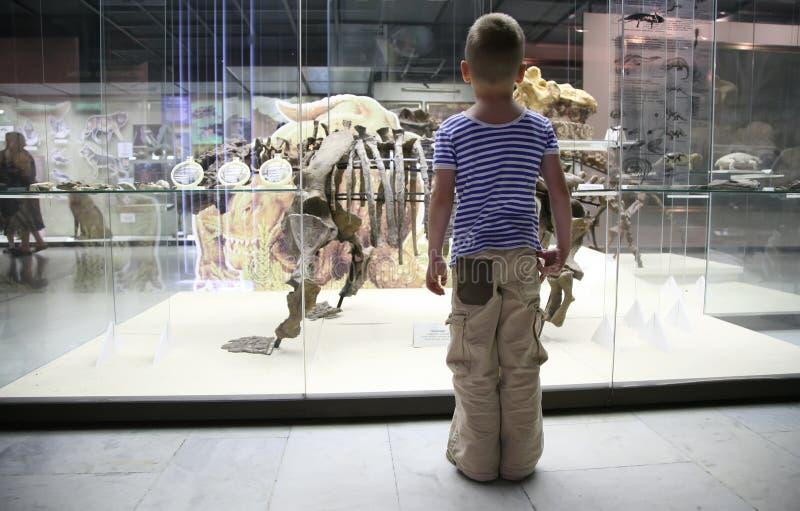 男孩博物馆 免版税库存照片