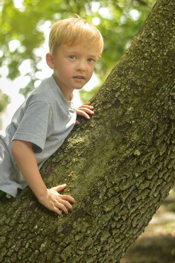男孩和树干 图库摄影