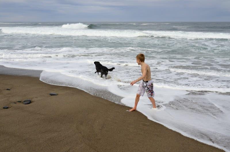 男孩和狗在岸 库存照片