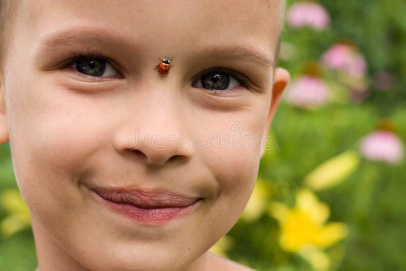 男孩和瓢虫 库存图片
