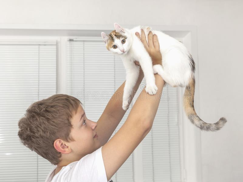 男孩在他的手上拿着小猫,提起他 免版税库存照片