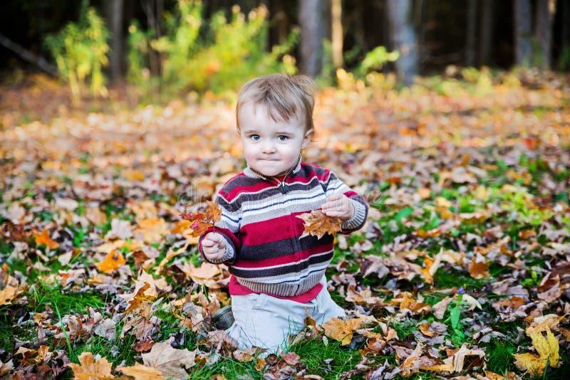 男孩在每只手上坐拿着一片枫叶 图库摄影