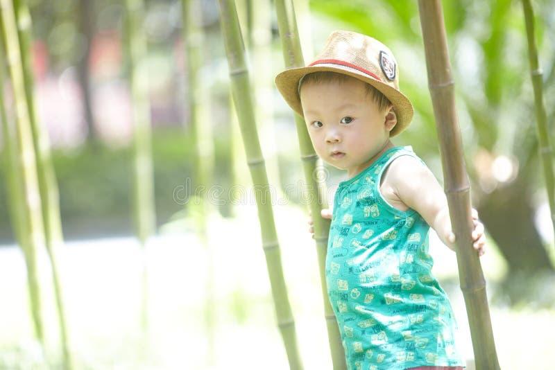 男孩在竹森林里在夏天 免版税图库摄影