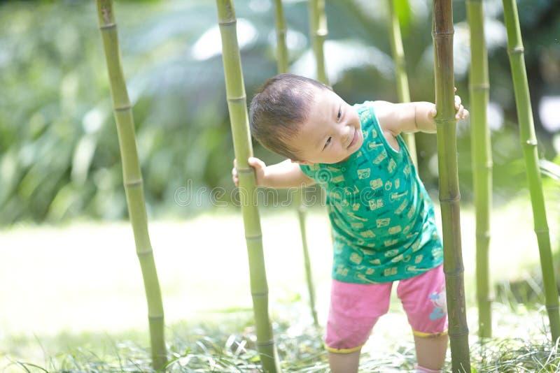 男孩在竹森林里在夏天 免版税库存图片