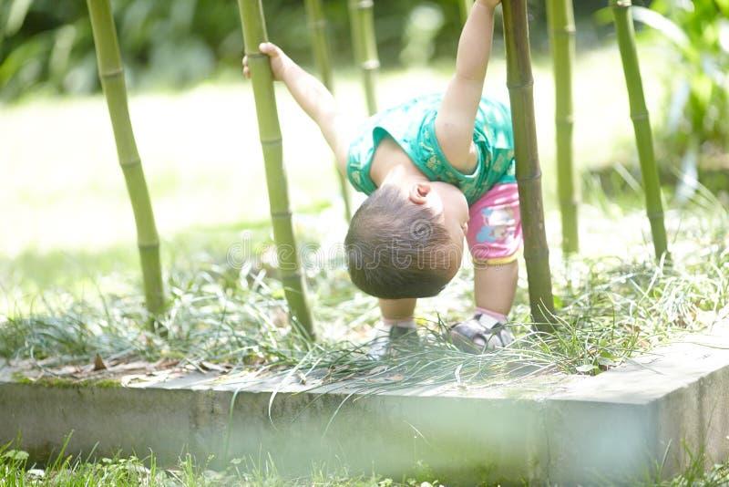 男孩在竹森林里在夏天 免版税库存照片