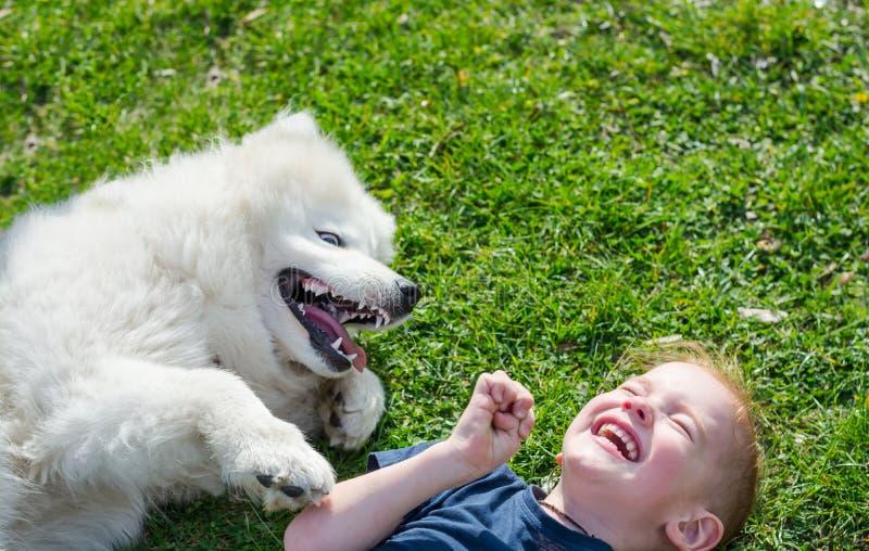 男孩在草的公园笑说谎与一条白色狗在春天 免版税库存照片