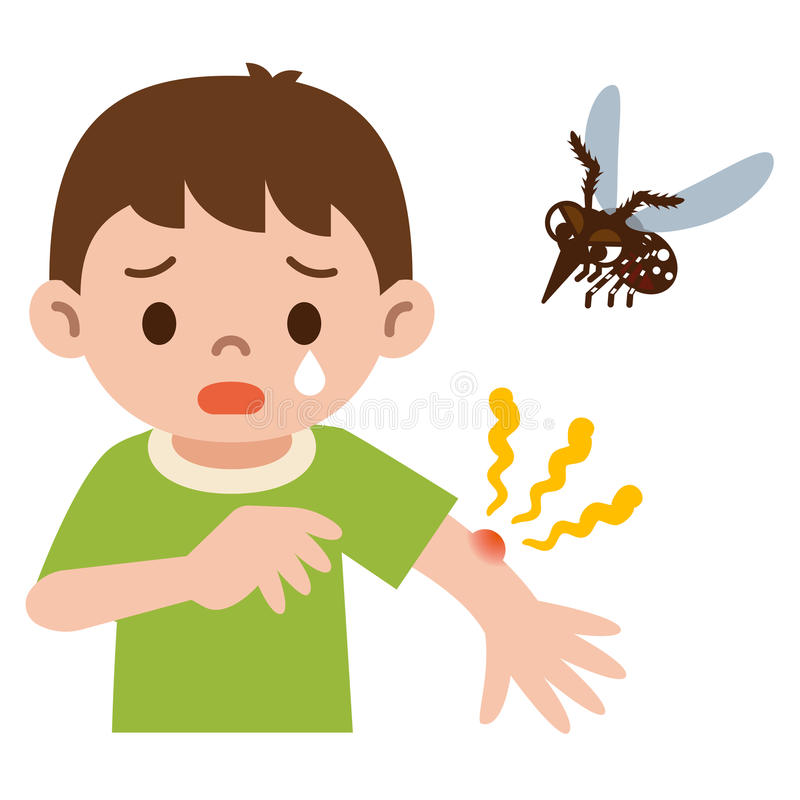 男孩在蚊子被刺中了 向量例证