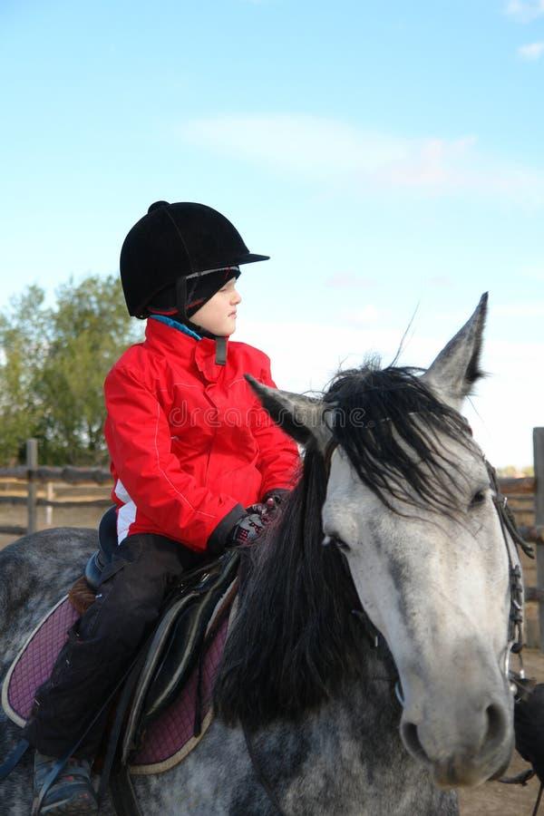 男孩坐马 免版税库存图片