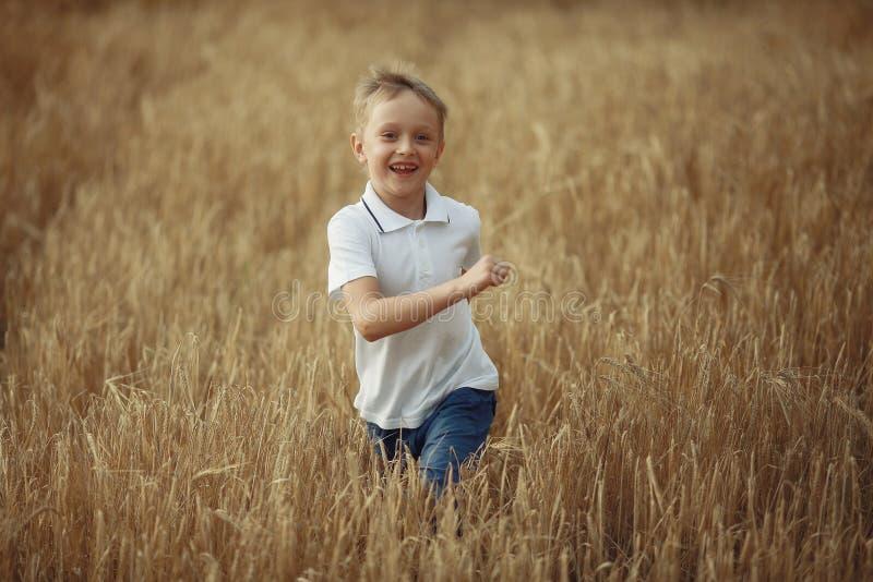 男孩奔跑通过麦田 免版税库存图片
