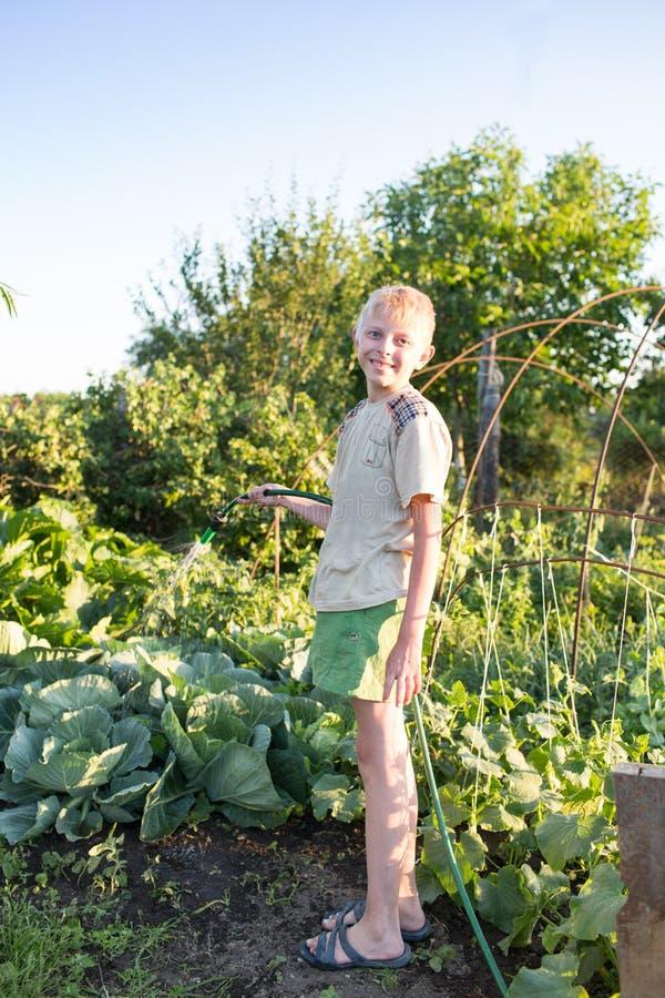 男孩庭院浇灌 库存图片