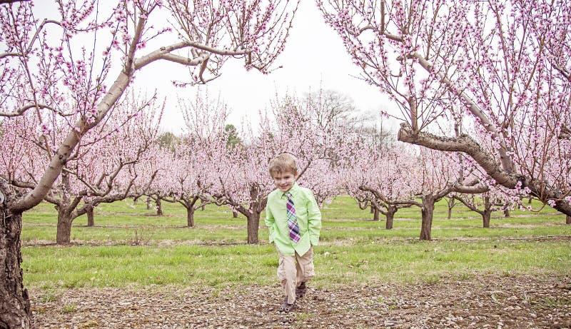 男孩微笑的站立在开花的树 免版税图库摄影