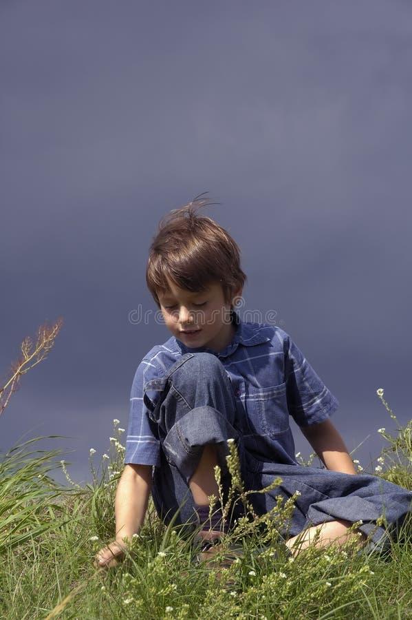 男孩测试的草甸年轻人 库存照片