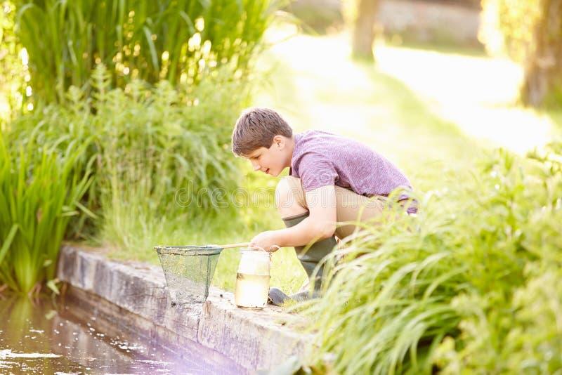 男孩渔在有网和瓶子的池塘 库存照片