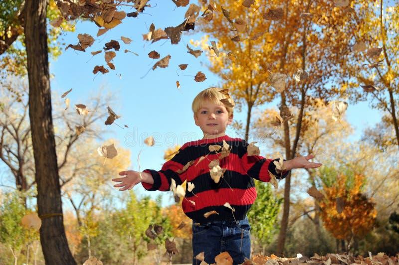 男孩秋天叶子使用 免版税图库摄影