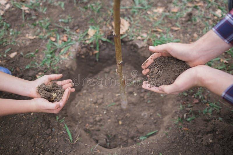 男孩种植了一棵年轻树入土壤 变褐环境叶子去去的绿色拥抱本质说明说法口号文本结构树的包括的日地球 拿着地球的男性手 库存照片