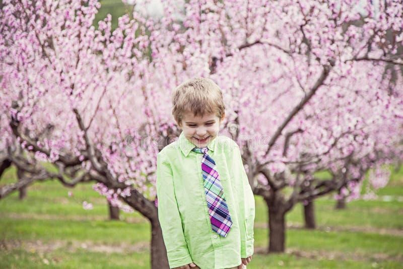 男孩笑的站立在开花的树 免版税库存照片